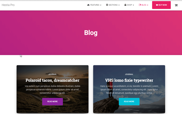 Best WordPress Themes for Bloggers You Should Know [2021] 3