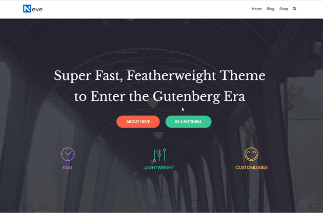 Best WordPress Themes for Bloggers You Should Know [2021] 2