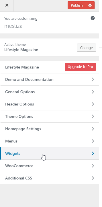 Add-widgets-from-customizing-bar