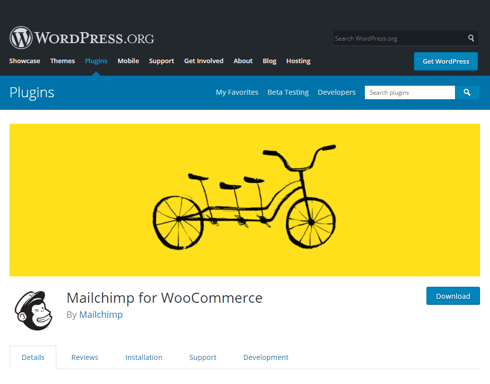mailchimp- how to create a news website in WordPress