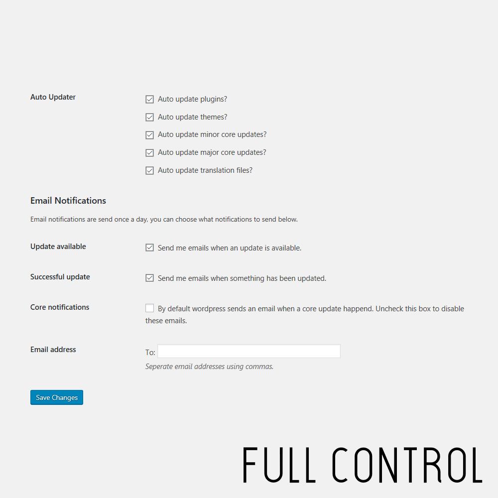 WordPress Automatic Update Companion Auto Update