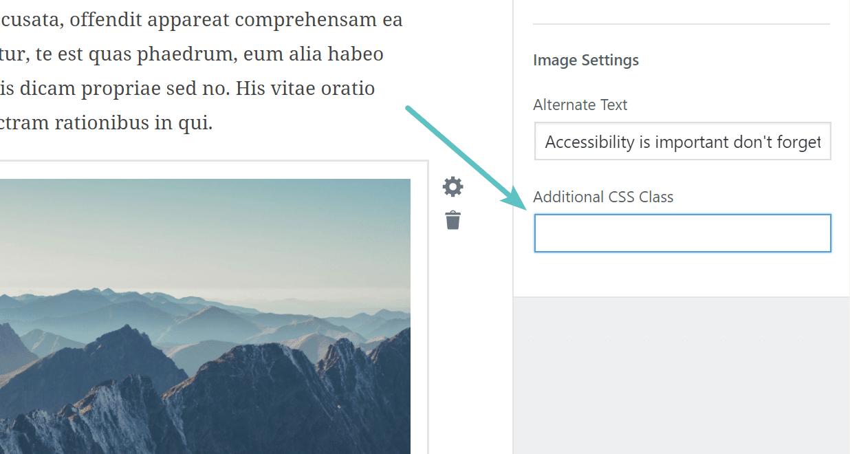 add-css-class WordPress 5.0 Review