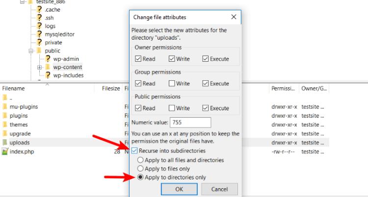 Filezilla File Permission Change