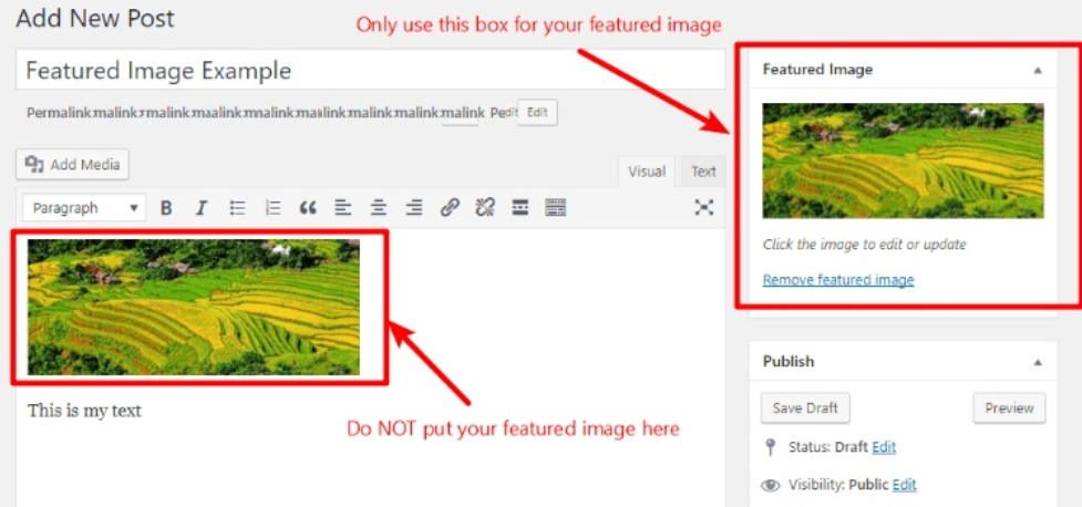 WordPress Image Error Featured Image Twice