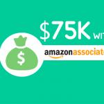 How I Set Up My First WordPress Blog and Earned $75K using Amazon Associates Program 3