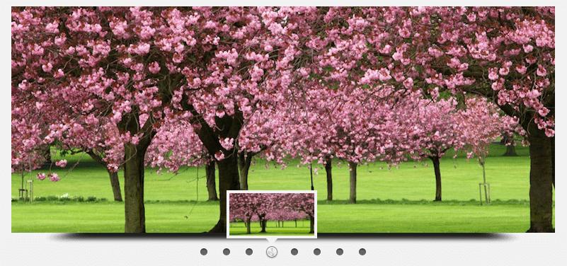 Wonderplugin Slider for WordPress