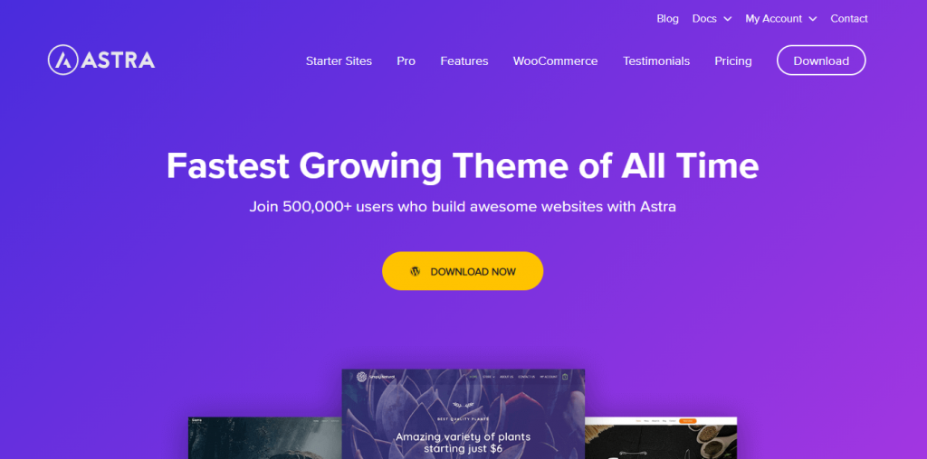 Best WooCommerce Themes - Astra Themes