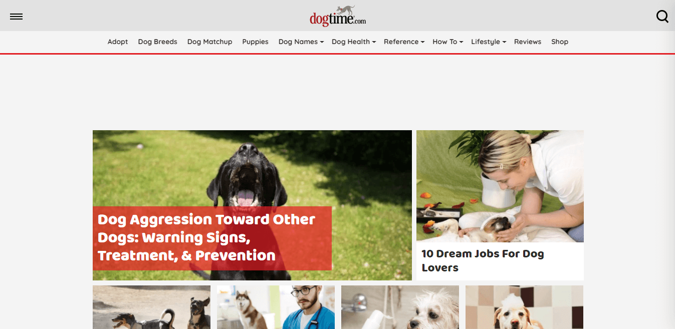 Pet lovers blog example