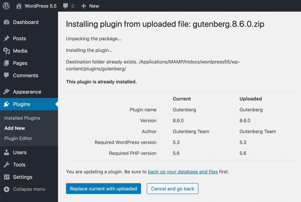 WordPress 5.5 Plugin update