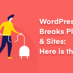 WP 5.5 breaks plugins