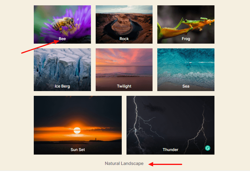 Write gallery and image caption