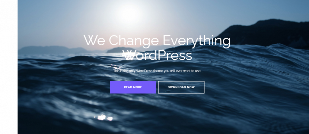 Shapely WordPress theme for business website